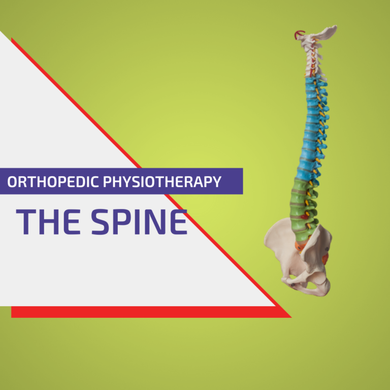 Orthopedic physiotherapy of the spine