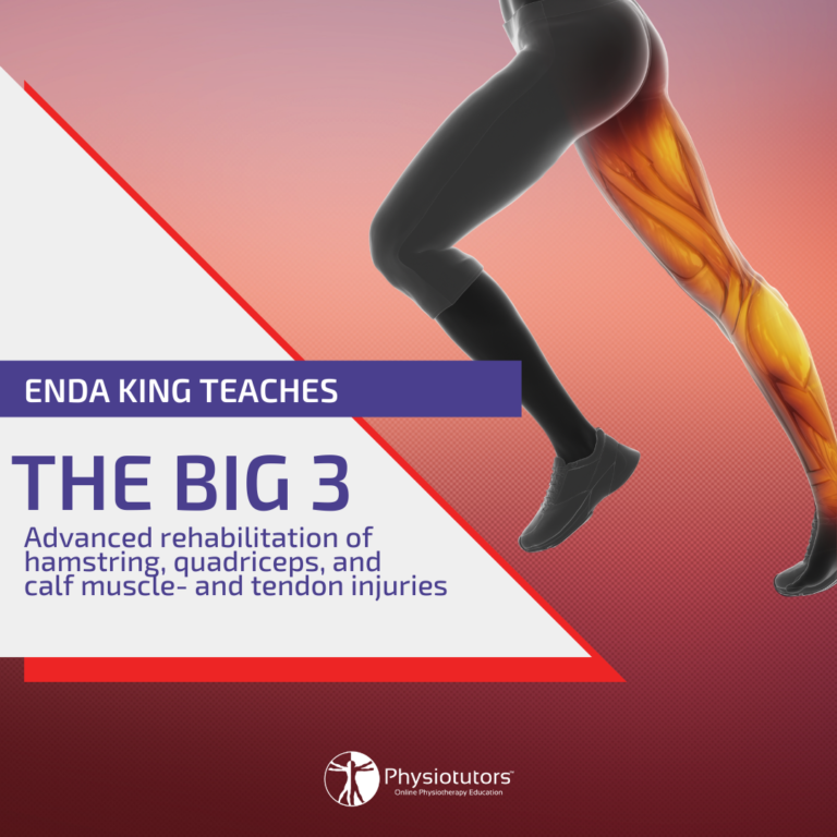 The big 3 advances rehab of quadriceps, hamstring and calf muscle and tendon injuries